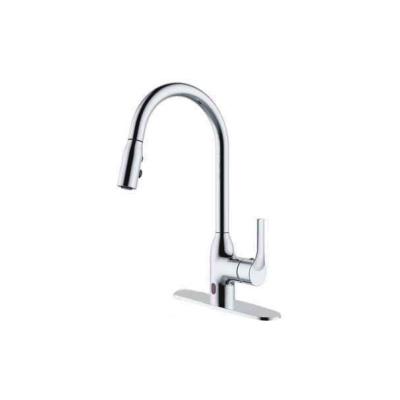 Kitchen Faucet E10FEC04-G